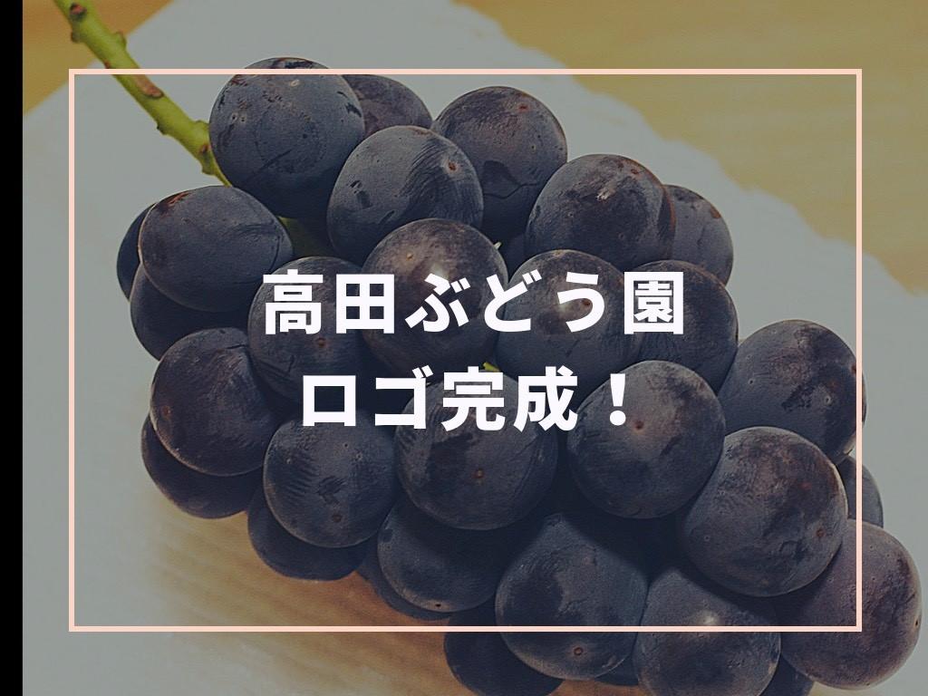 高田ぶどう園のロゴ完成!