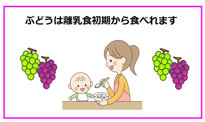 育児ママさん必見!ぶどうは離乳食初期から食べられます!
