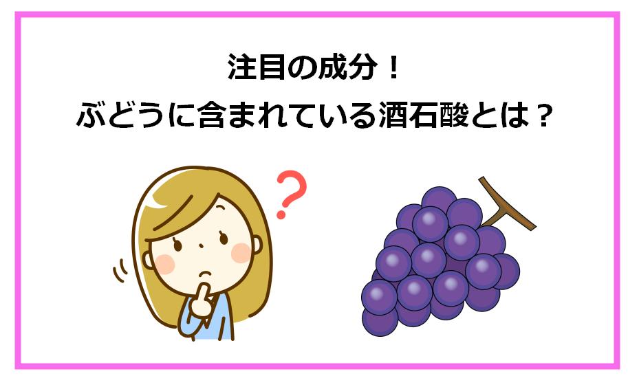 注目の成分!ぶどうに含まれている酒石酸とは?